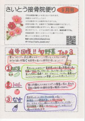 Img135_copy